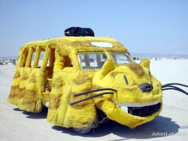 funny car, cat car