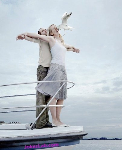 funny photo bomb, seagull spoils the romantic moment